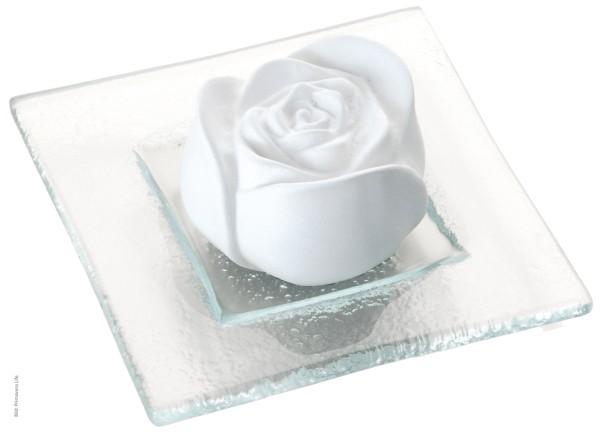 Duftstein Rosenblüte auf Glasteller
