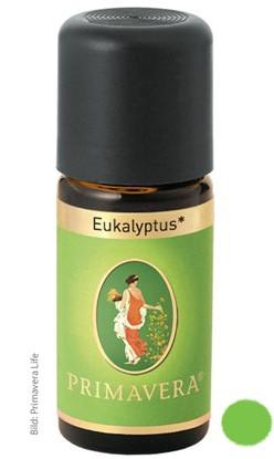 Ätherisches Öl: Eukalyptus globulus bio 10ml